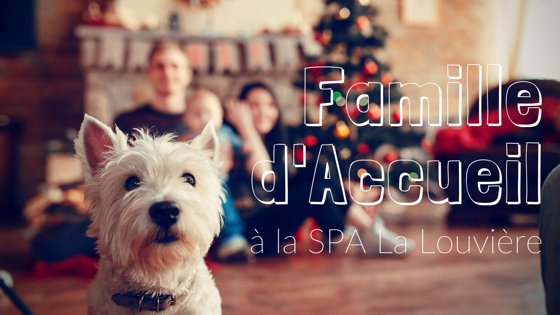 Famille d'Accueil SPA - Copyright Freepik.com